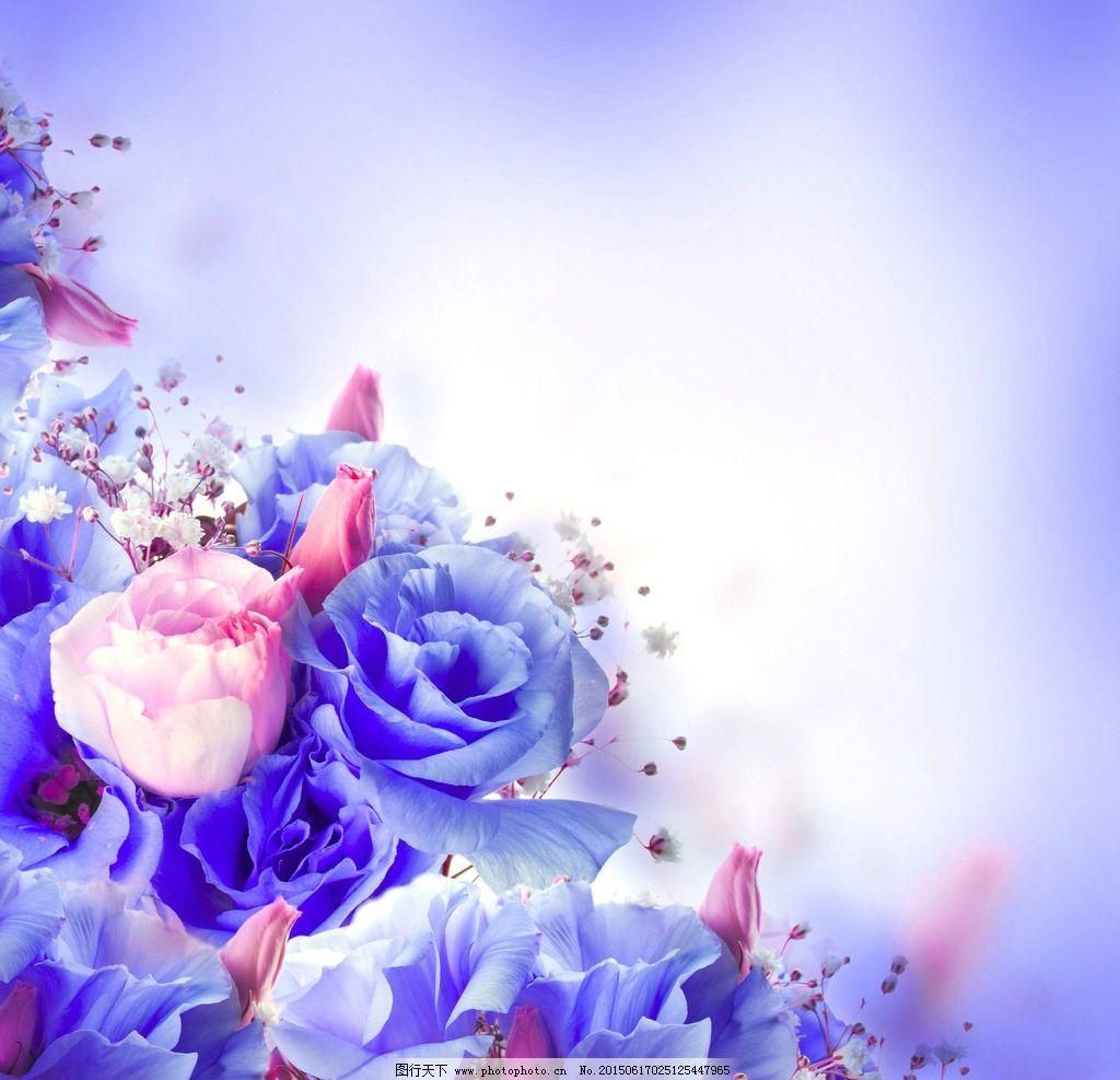 玫瑰简单又漂亮手绘