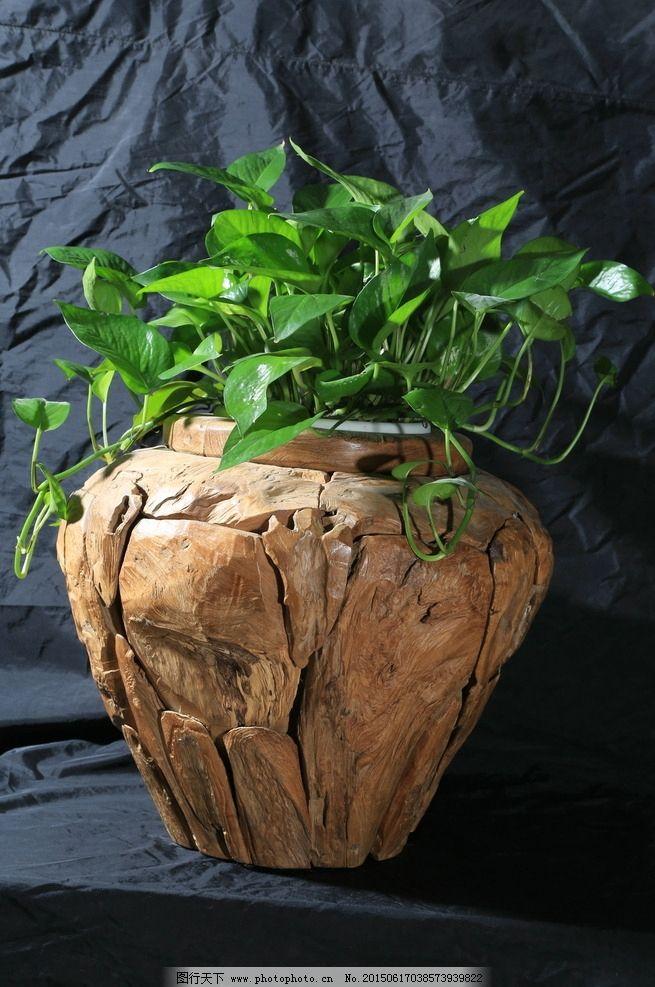 木质花盆 家居饰品 绿萝 老船木 摆件 花瓶 原生态 文艺 摄影 文化