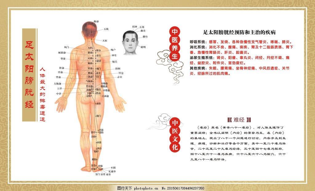 人体穴位囹il_人体穴位图
