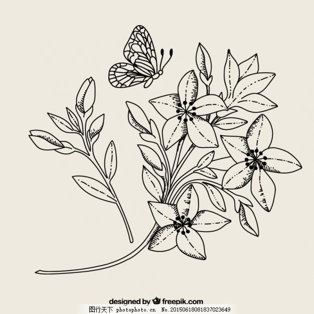 黑白花和蝴蝶 自然 树叶 动物 翅膀 植物 白色 繁茂 开花 昆虫
