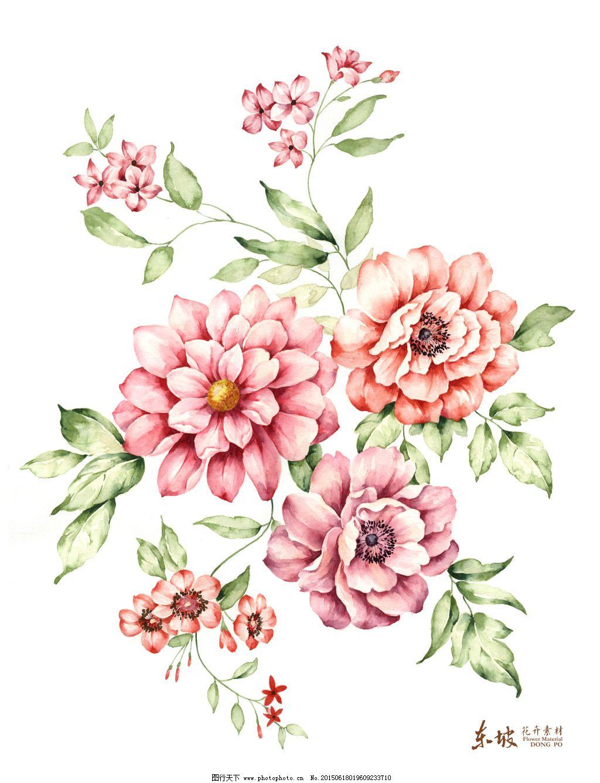 新手绘花卉