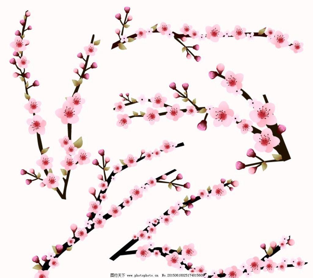 樱花枝 桃花树 梅花图片