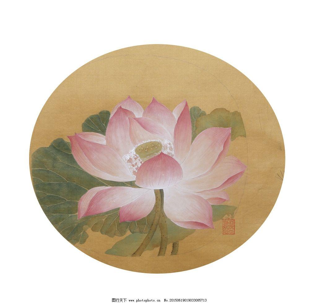 团扇荷花图片手绘