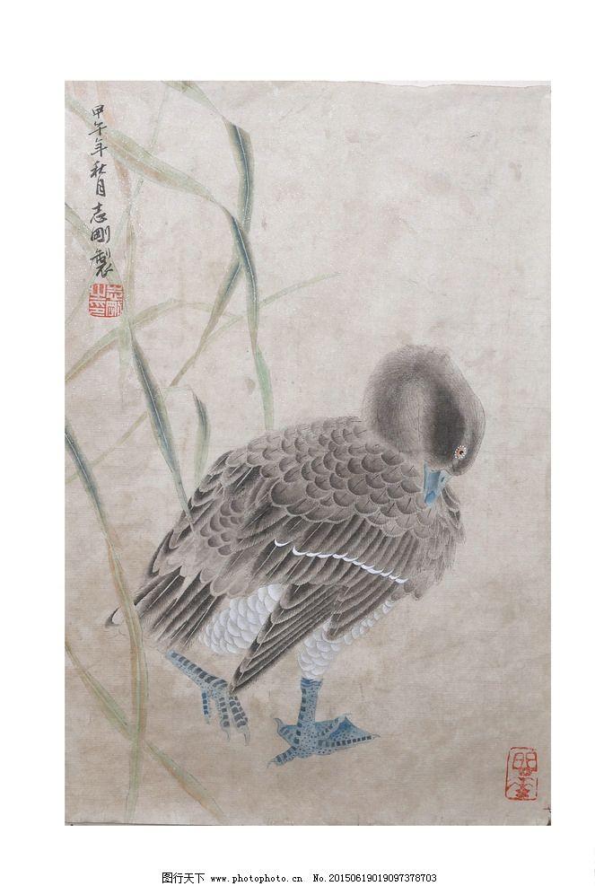 水鸭 鸭子 写意画 工笔画 艺术画 水墨画 古画 国画 设计 文化艺术