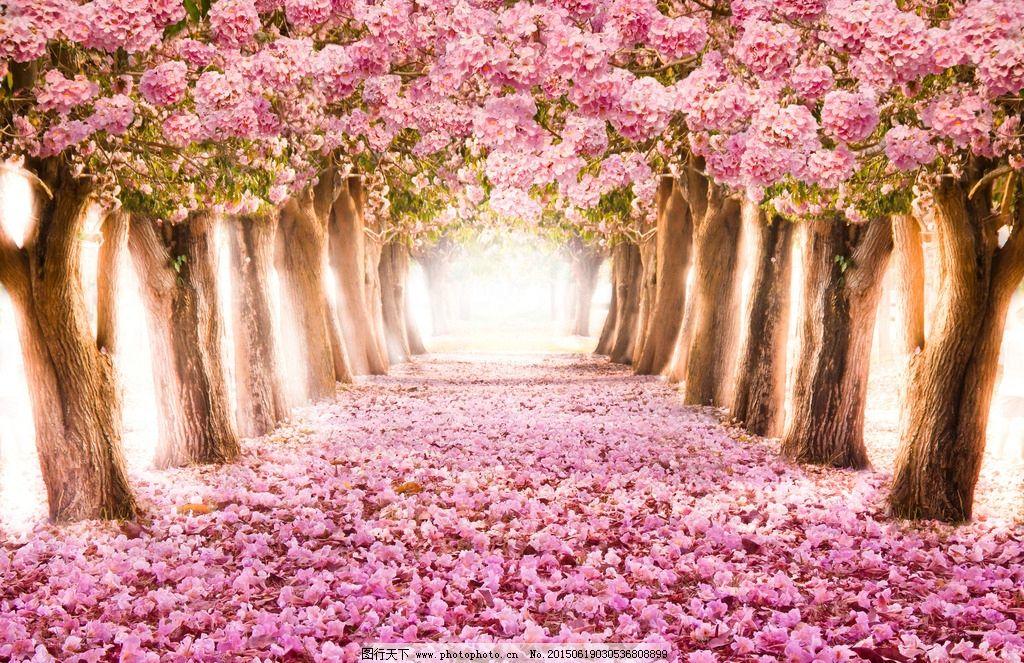 景观 景观园林 花园 植被 生态 环保 自然 花卉 花朵 花丛 油画 手绘