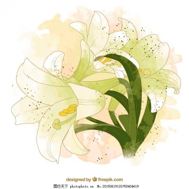 手绘自然花 花 水彩画 手 自然 绘画 植物 手画 画 ai 白色 ai