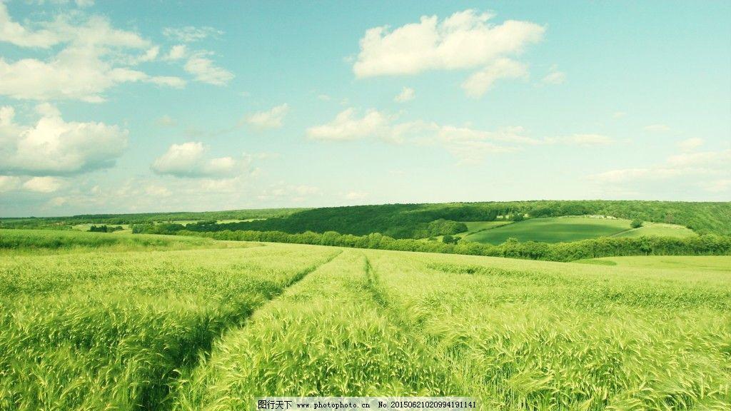 蓝天 蓝天绿地 绿地 蓝天绿地 蓝天 绿地 图片素材 背景图片