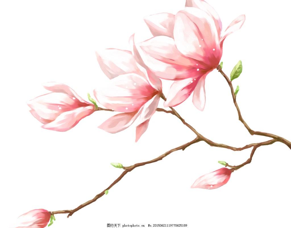 手绘唯美桃花psd素材背景图 春天 夏天 唯美淡雅桃花 白色