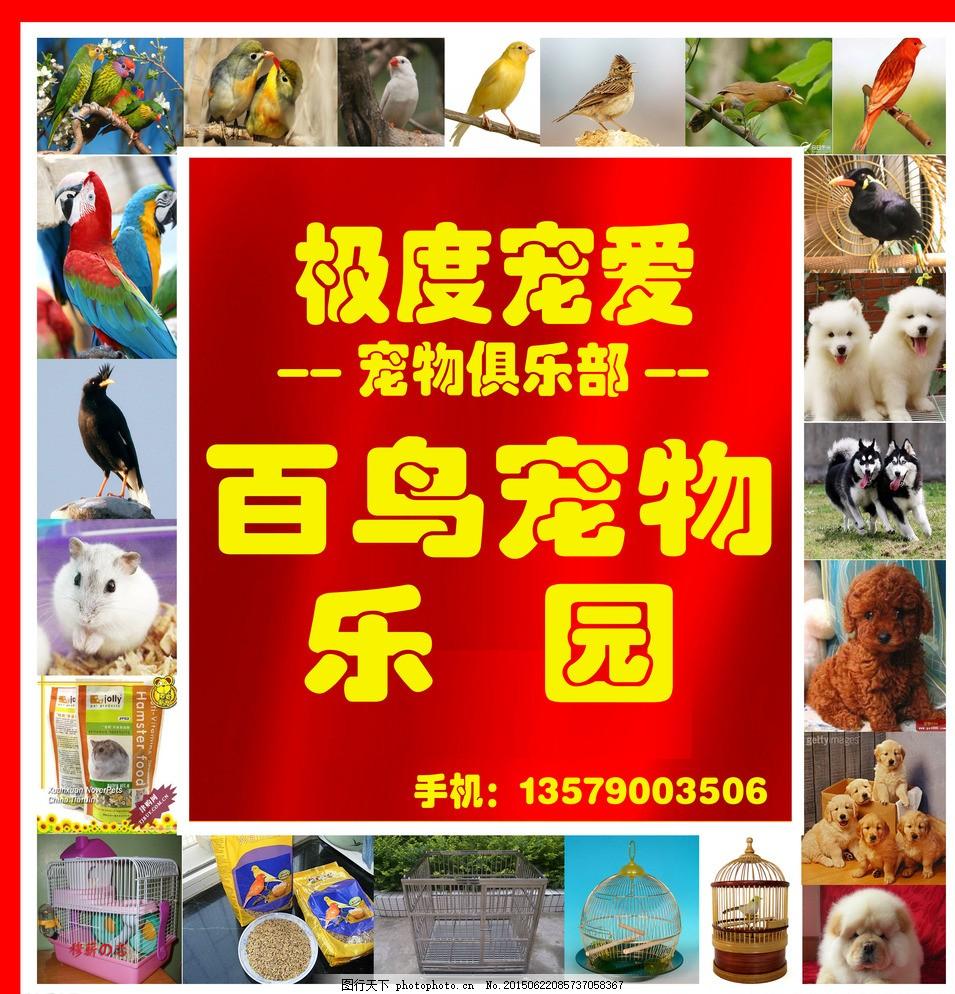 宠物店 宠物乐园 宠物招牌 海报 花鸟鱼招牌 设计 广告设计 招贴设计