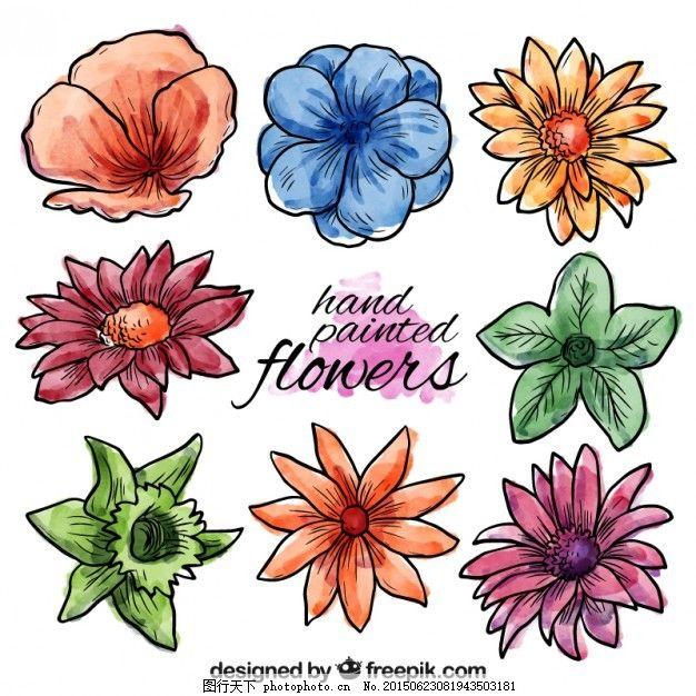 手绘春花 水彩画 自然 油漆 春天 花园 园艺 开花 白色