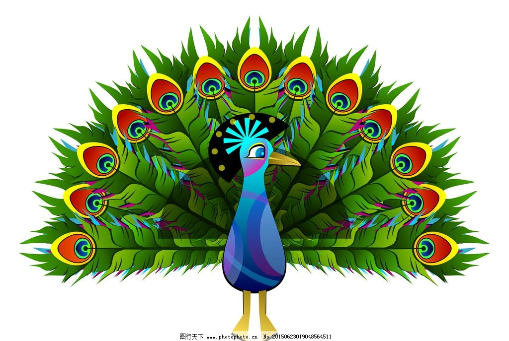 孔雀 绿色孔雀 孔雀彩绘