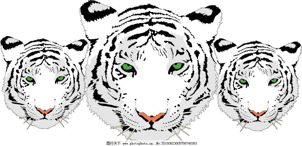 老虎 老虎免费下载 豹子 老虎矢量图 野生动物 日常生活