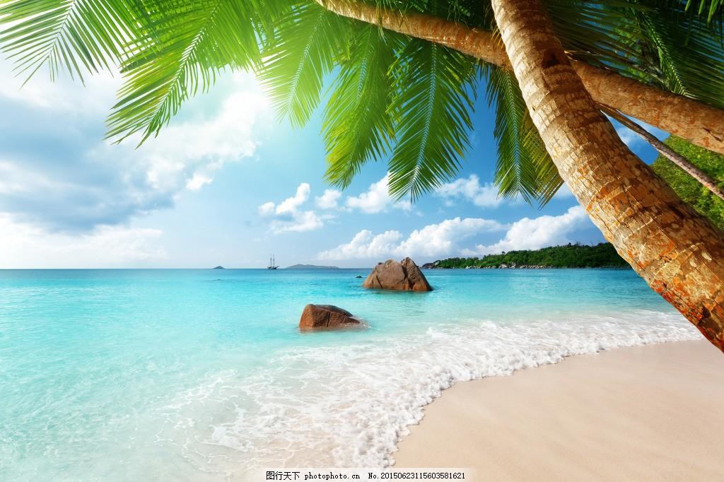 海边椰子树 海边 阳光 椰子树 海南     青色 天蓝色 jpg