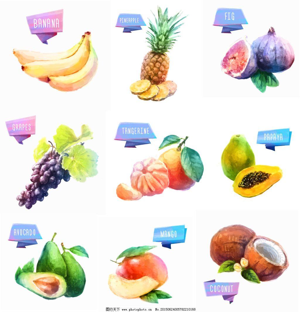 手绘水果免费下载 葡萄 水果 香蕉 水果 香蕉 葡萄 矢量图 日常生活