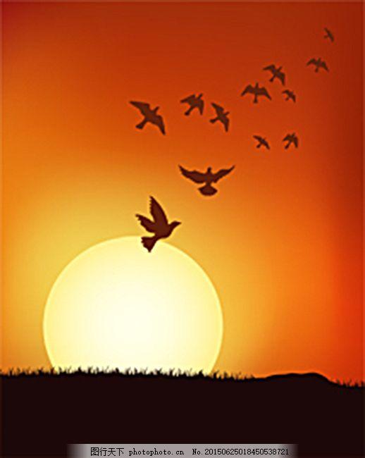 美丽夕阳剪影 鸟 动物剪影 太阳下山 黄昏矢量图 光芒 风景 日落