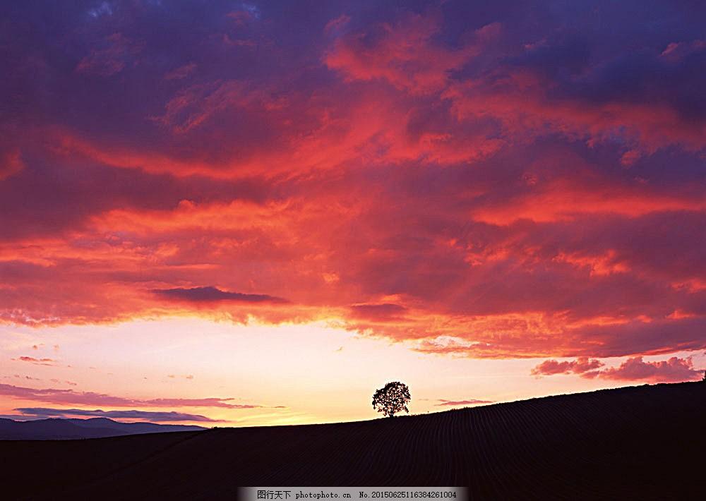 晚霞风景摄影 四季风景 美丽风景 美景 自然景色 树木 田园风光