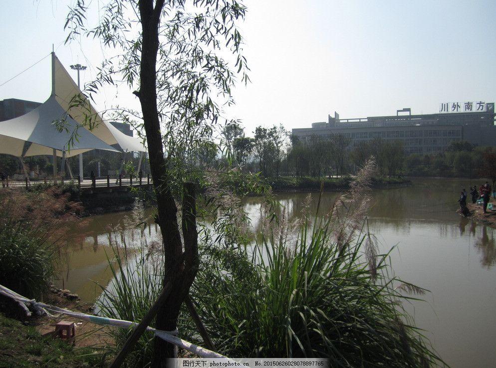 钓鱼河 重庆南方翻译学院 川外南方翻译学院 重庆大学校园 校园风景
