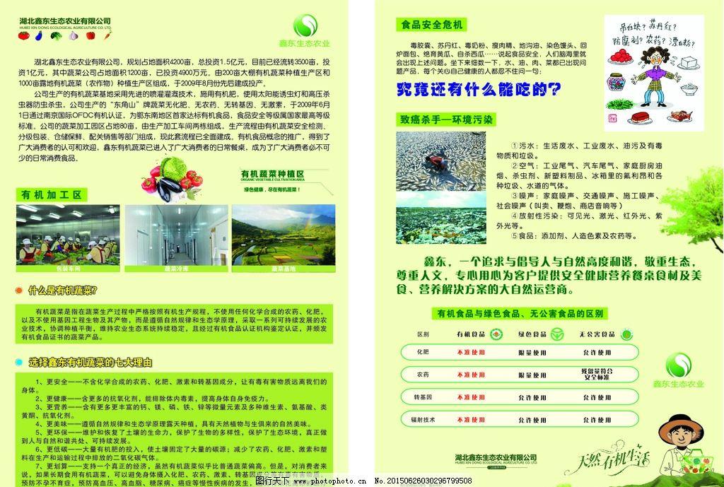 鑫东蔬菜公司简介宣传单图片_展板模板_广告设计_图行