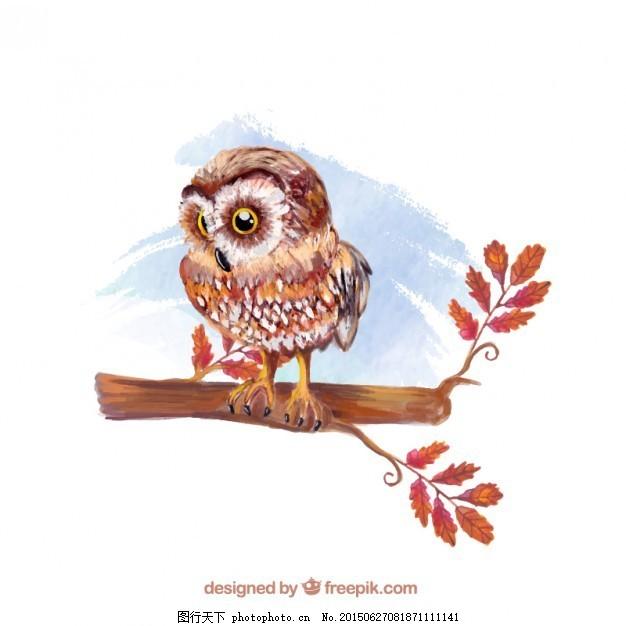 水彩手绘猫头鹰插图 动物 油漆 野生 画 白色