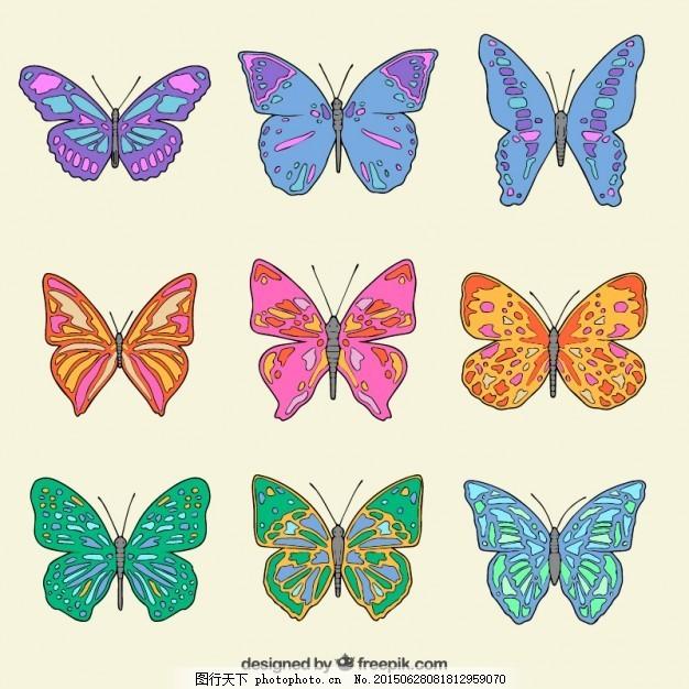 手绘彩色蝴蝶收藏 一方面 自然 动物 色彩 绘画 飞 蝴蝶飞 昆虫
