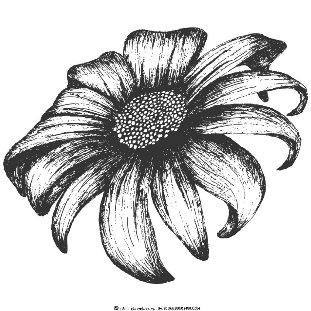手绘简单的花朵