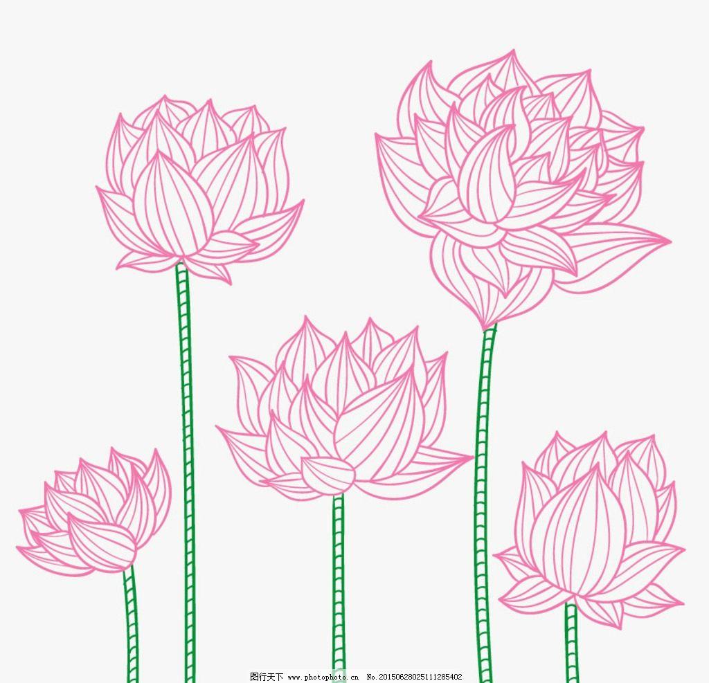 简笔画荷花图片_花草_生物世界-铅笔画荷花的步骤