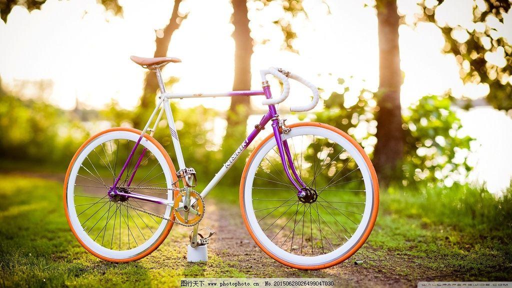 高清自行车风景图