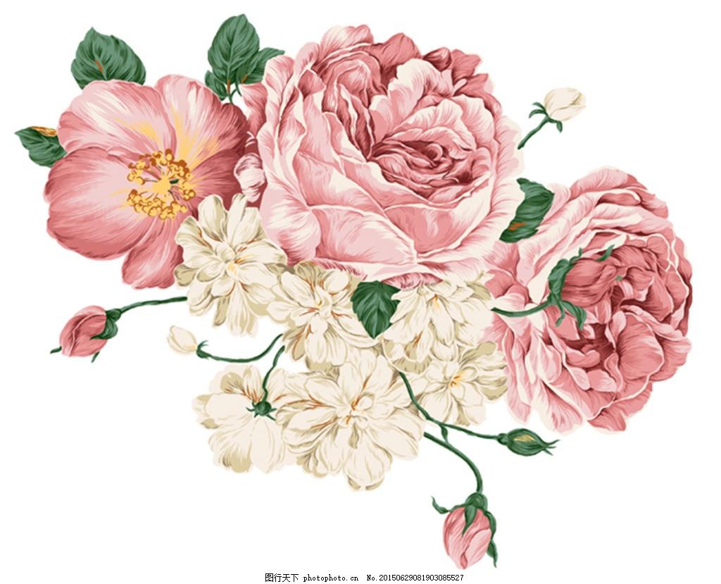 手绘花朵 花簇 白色