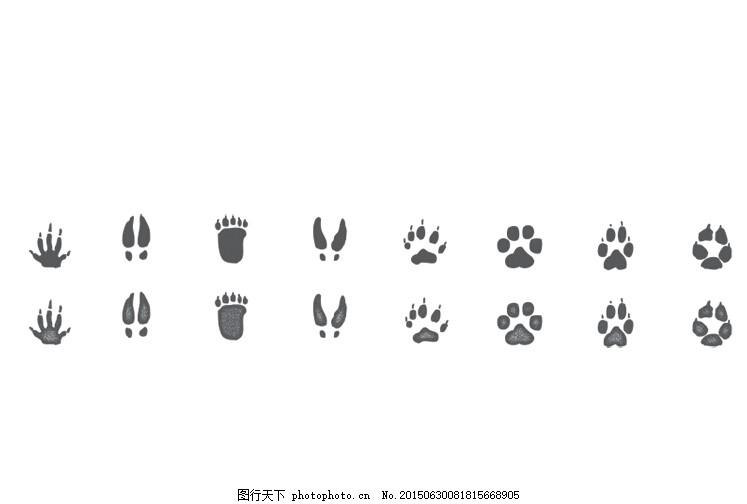 各种动物脚印矢量素材