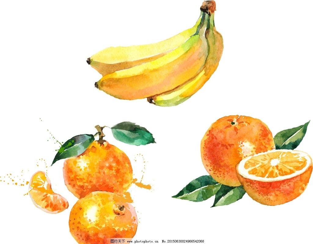 橘子手绘素材