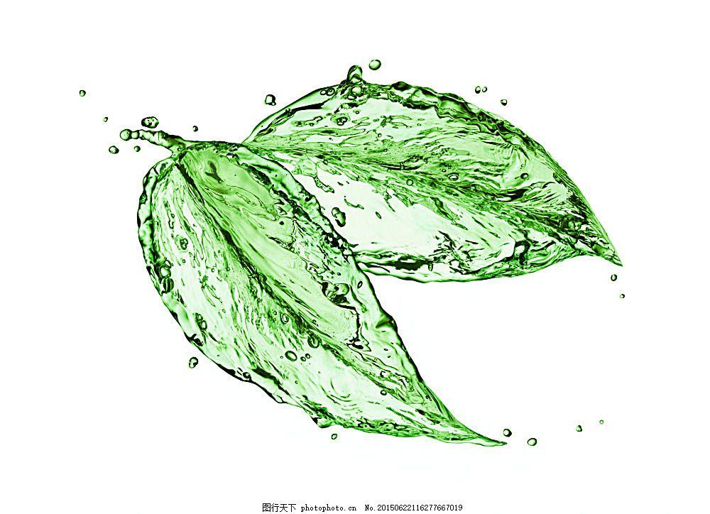 创意水纹绿叶,水纹树叶,绿色叶子,春天树叶,水珠,其他生物,生物世界